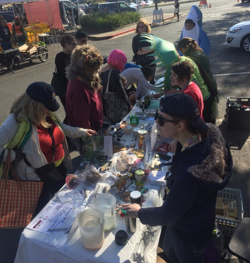 South Berkeley Farmer's Market, Halloween 2017